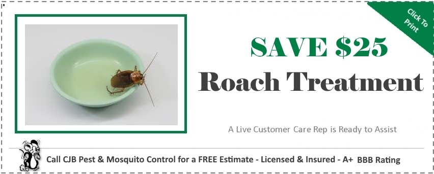 Cockroach Coupon