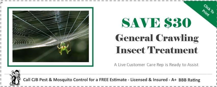 General Crawling Insects Coupon