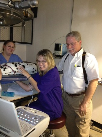 Teaching veterinary ultrasound