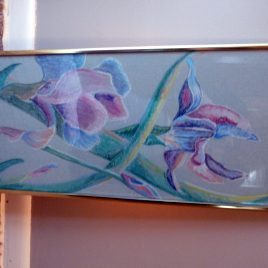 Purple Hued Irises