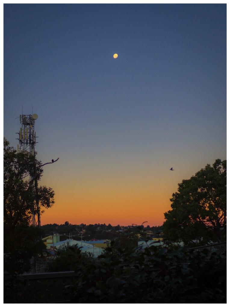Moonrise Over Jesmond