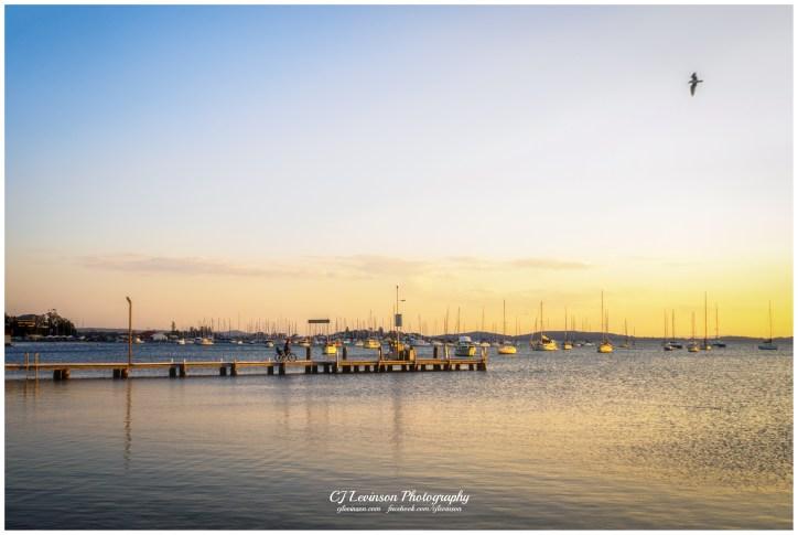 Across the Wharf