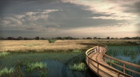 cjparis_wetlands_02
