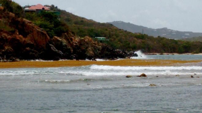 Limestone bay- surfs up!