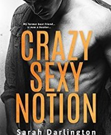 5 Star Review ❣️ Crazy Sexy Notion: A Second Chance Romance by Sarah Darlington