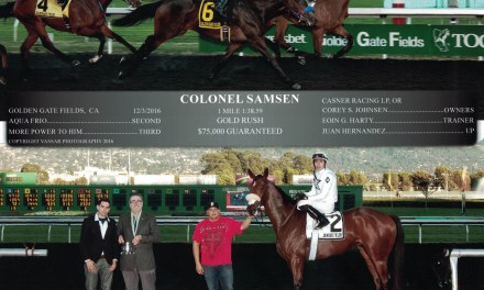 Colonel Samsen – Golden Gate Fields – 2016 Gold Rush Stakes