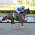 Replay – Sally's Curlin – The Hurricane Bertie (GIII) – Gulfstream Park