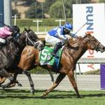 Replay – Amanzi Yimpilo – The Speakeasy Stakes – Santa Anita