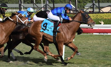 Replay – Bienville Street – The Sunshine Filly & Mare Turf – Gulfstream Park