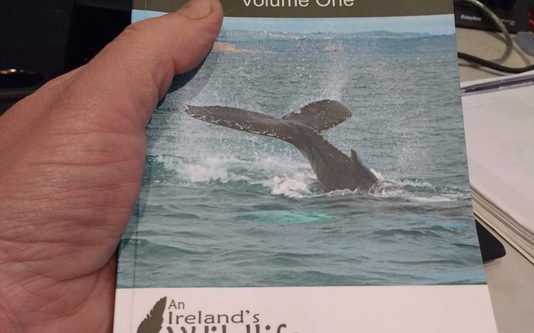 New wildlife book: The Irish Wildlife Collection: Volume One