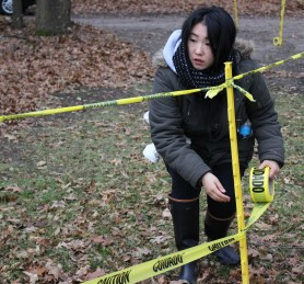 Mimnha Fisher helping set up the course for La Frost Cross on Saturday, Dec. 3. 2016 in Mount Pleasant, MI.