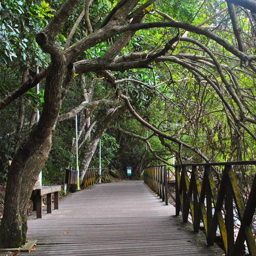 Conheça o Deck do Pontal Norte em Balneário Camboriú