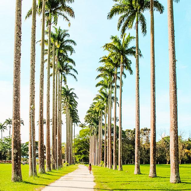 Dicas de lugares para conhecer em São José dos Campos