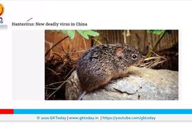 Hantavirus Outbreak| 1 Killed in China | Everything You Need to ...