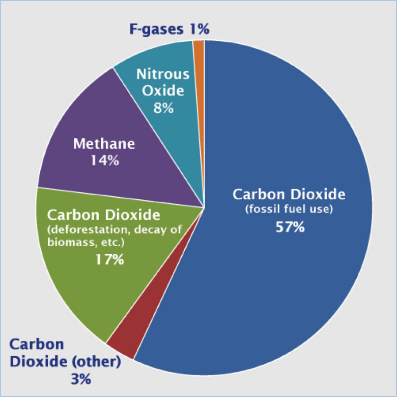 Global Gas Emissions  Climate Energy and Society