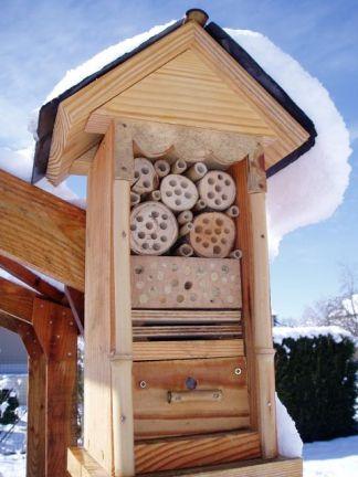 maison-insectes