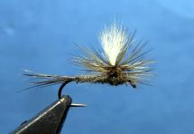 Parachute-Adams-Fly-Tying-Video