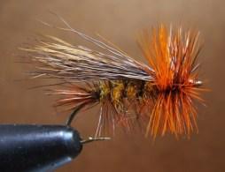 uc hairwings 002 (500x383)