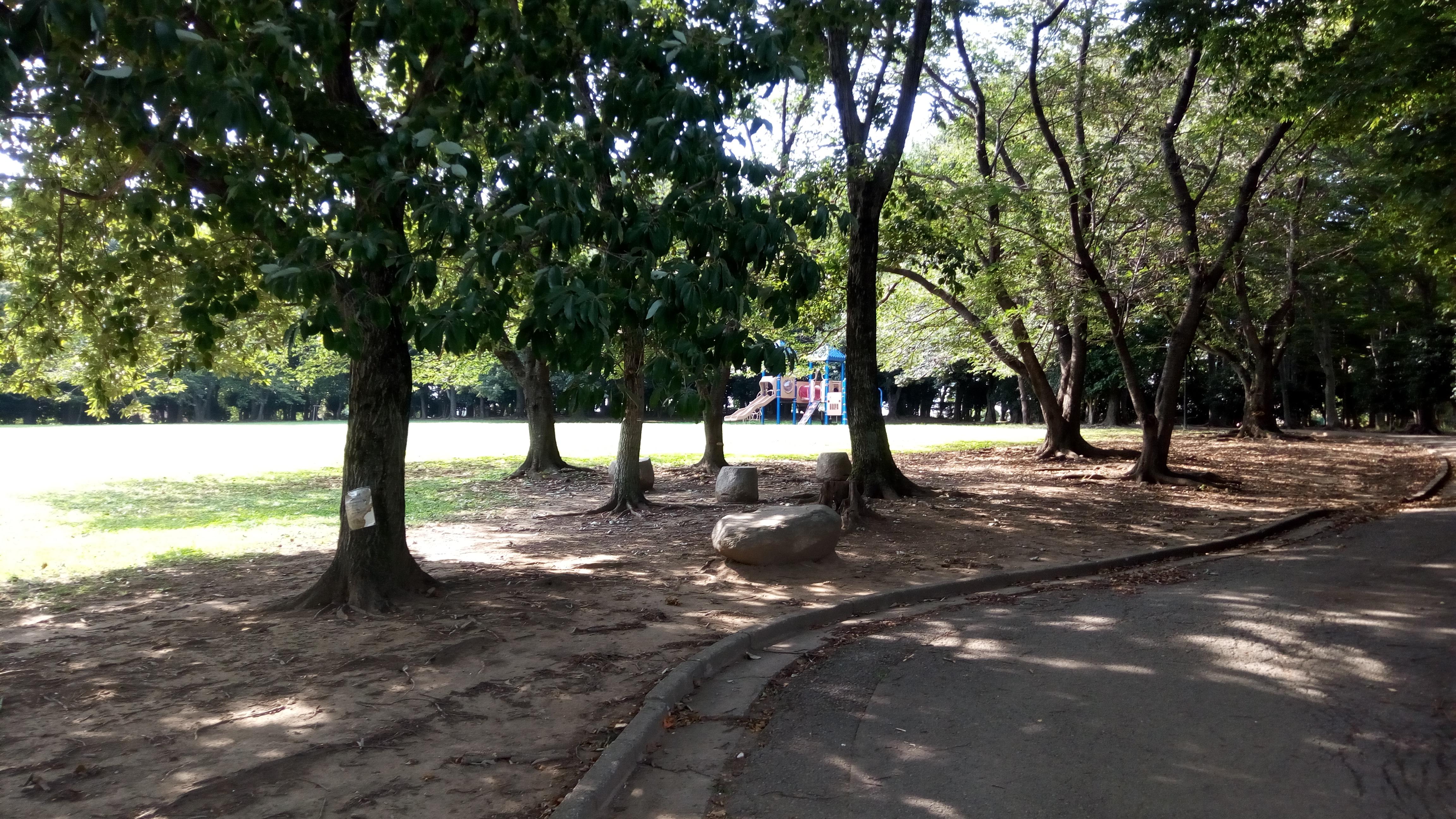 住宅地の中の静かな公園 柏ビレジ近隣公園