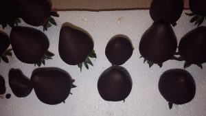 chocolate dipped strawberries on toothpicks stuck in a foam sheet