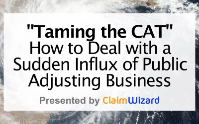 Taming the CAT – How to Deal with a Sudden Influx of Business