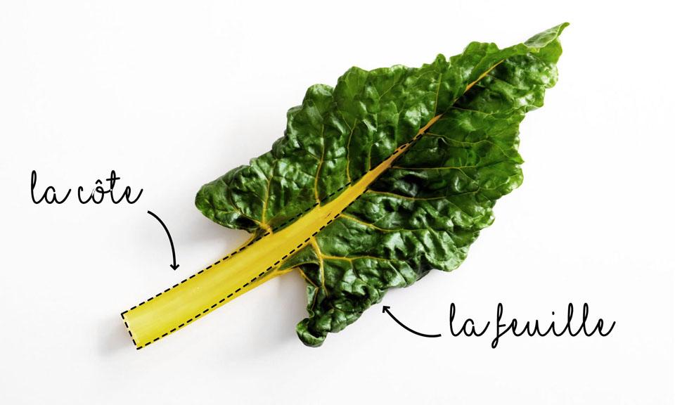 La blette, légume anti-gaspi : tout se mange !