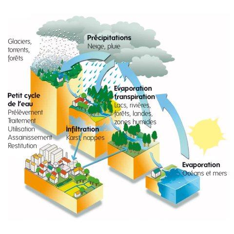 Infographie sur le petit et grand cycle de l'eau