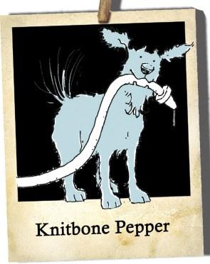 knitbonemugshot