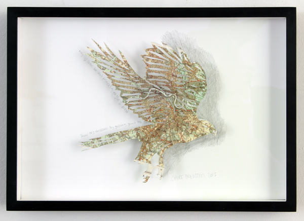 clairebrewster_eagle_framed