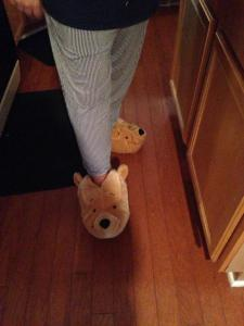 Pooh Bear slippers