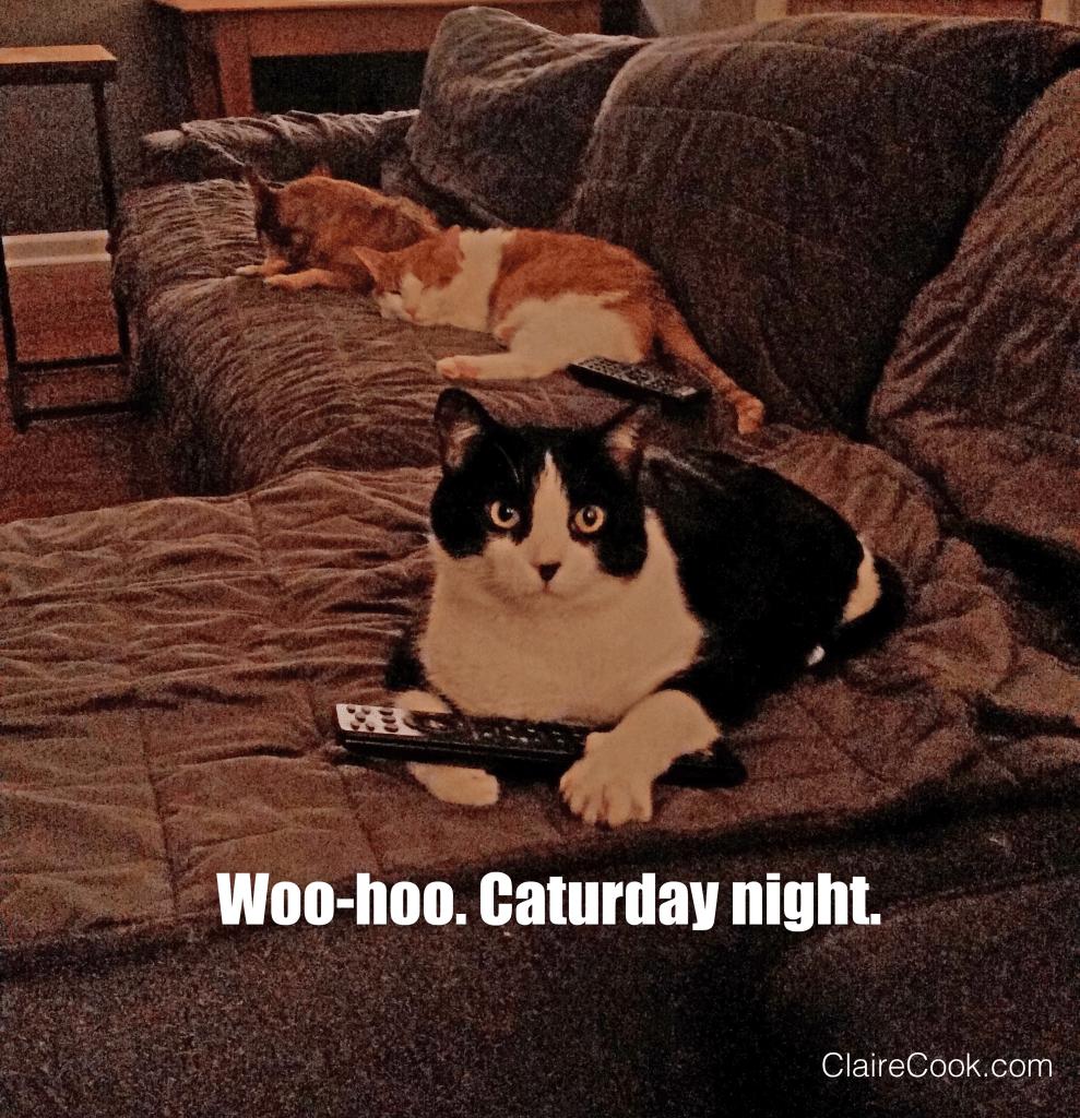 Caturday Night The Remote
