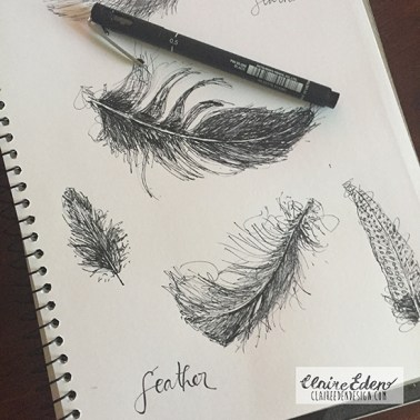 feathers_sketchbook