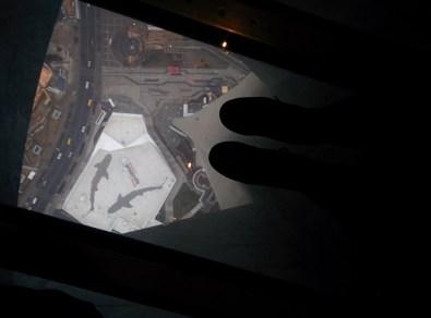 The glass floor with Ripley's Aquarium underneath.