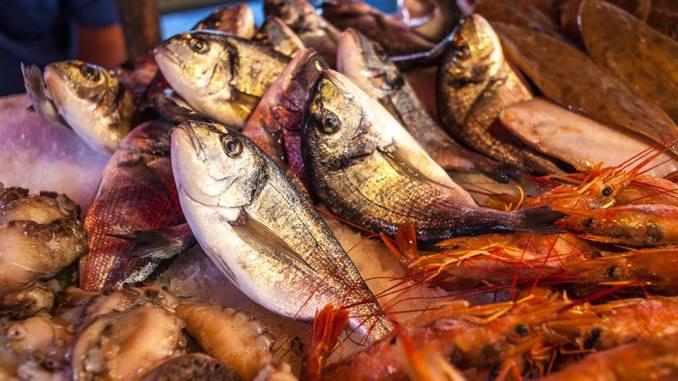 pesce, mercato del pesce