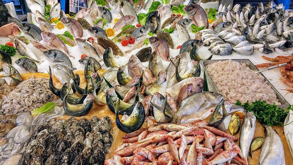 pesce al mercato di palermo