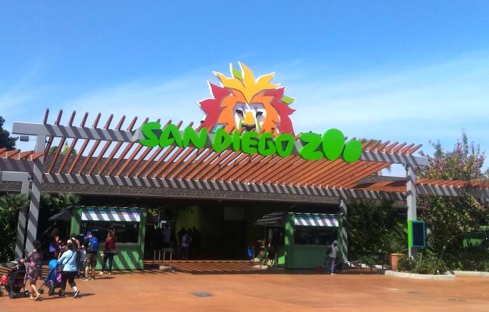 ingresso Zoo di San Diego