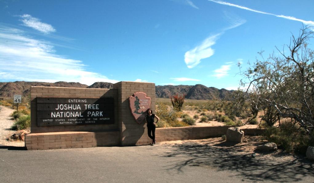ingresso del Joshua Tree negli Stati Uniti durante il nostro viaggio in camper