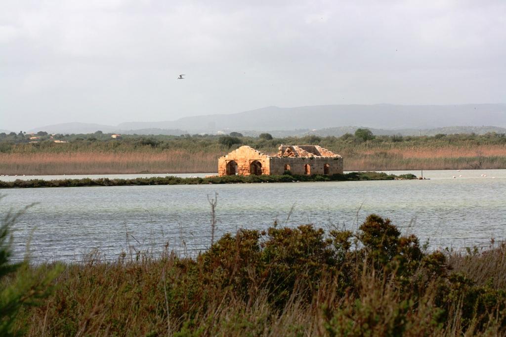 pantano alla riserva naturale di vendicari in Sicilia