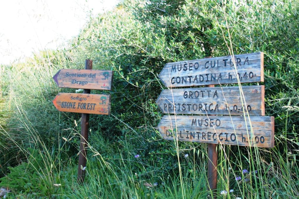 indicazioni e percorsi alla riserva dello zingaro