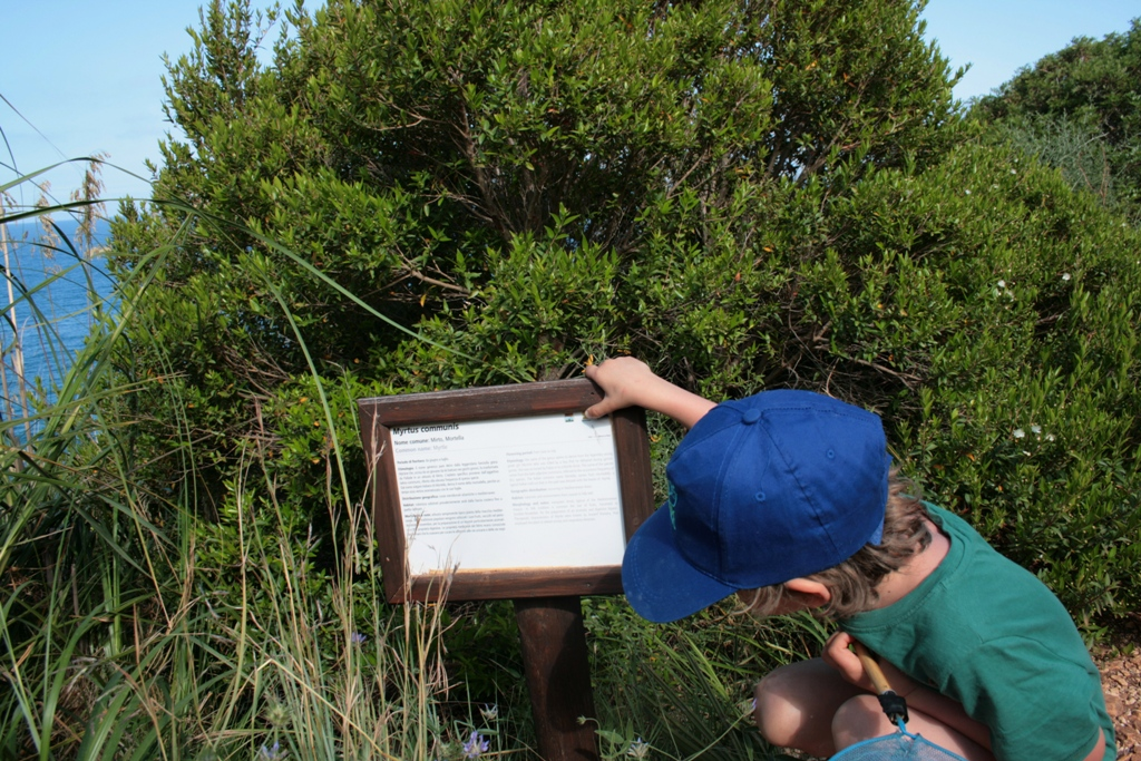 bambino alla riserva dello zingaro che osserva una pianta