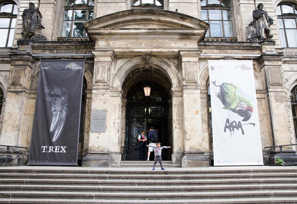 un bambino davanti il museo di storia naturale a Berlino