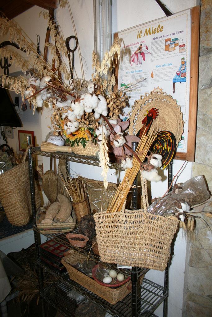museo contadino fattoria didattica