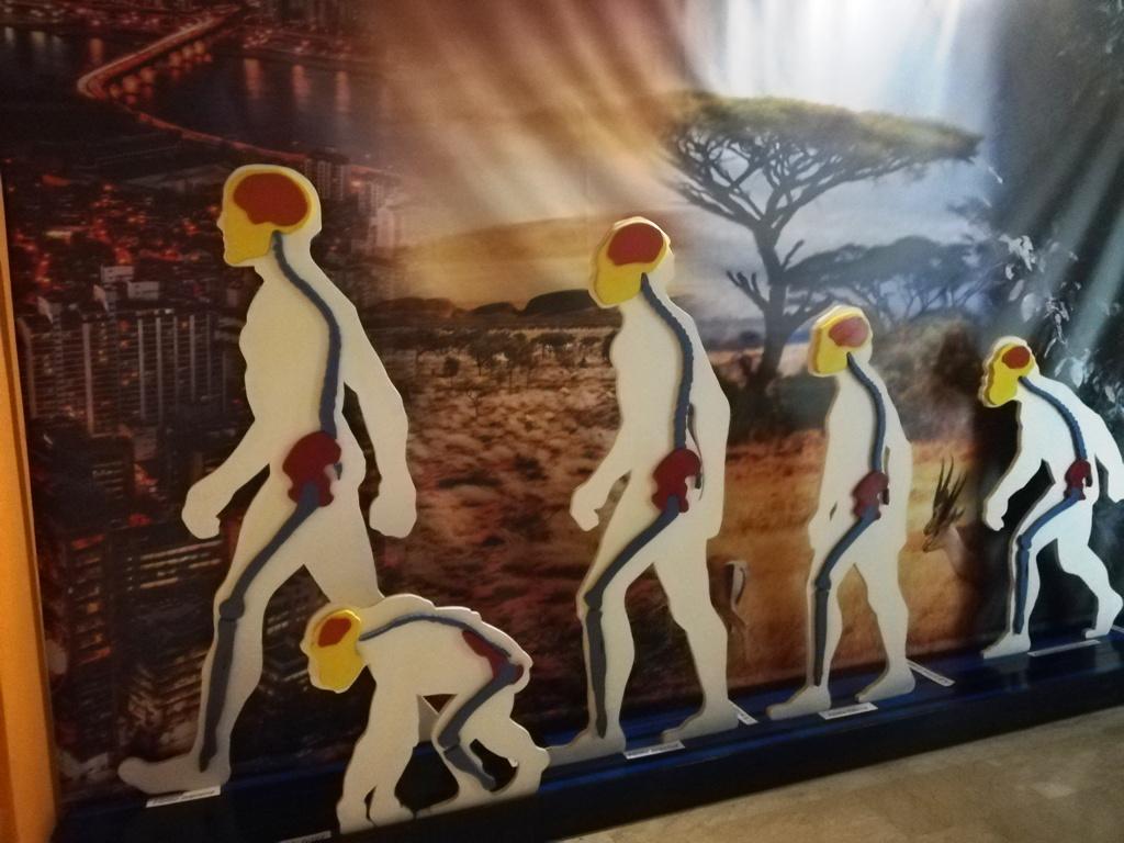 inizia la visita al museo geologico gemmellaro