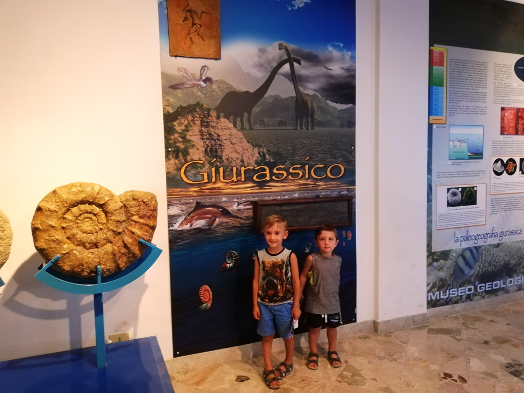 museo-geologico-gemmellaro-giurassico.jpg
