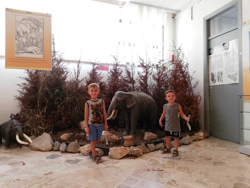bambini che giocano al museo geologico gemmellaro