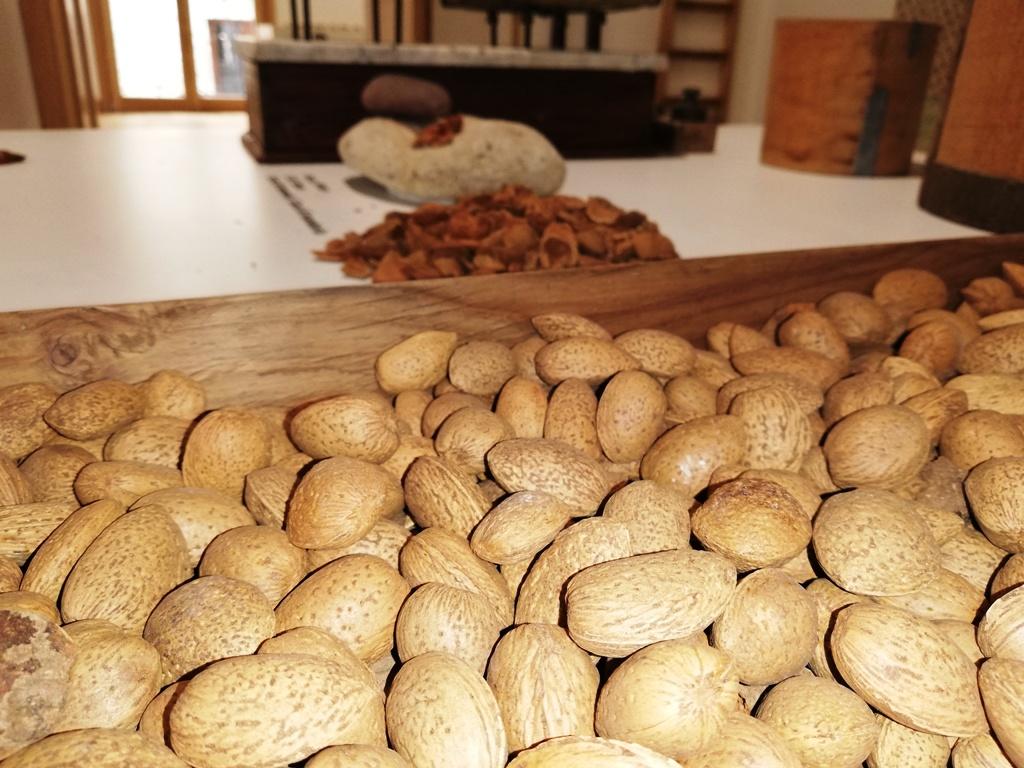 mandorle tipiche della cucina siciliana