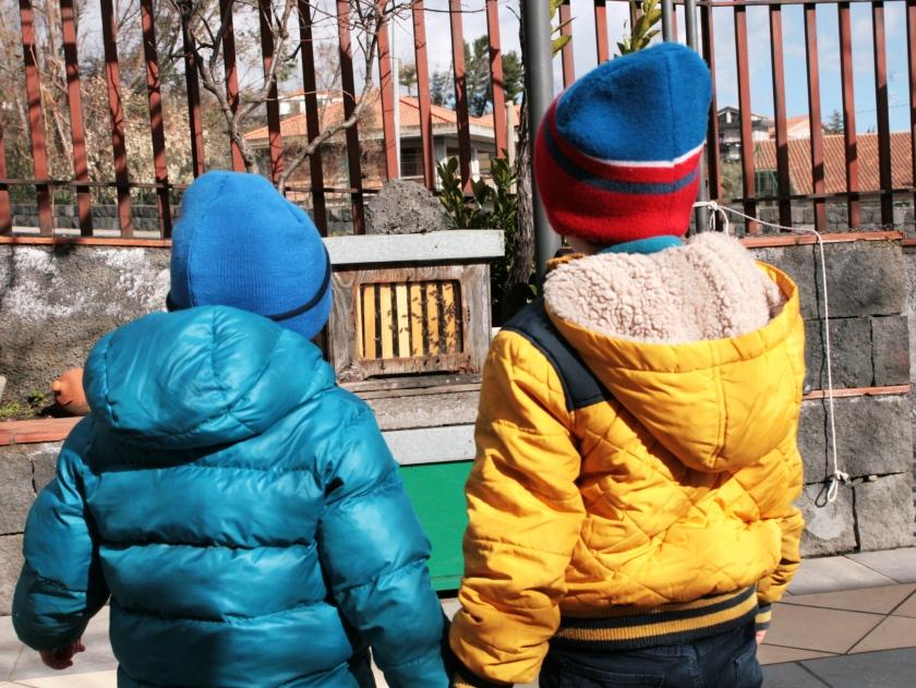 bimbi che guardano un'arnia