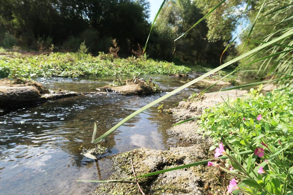 fiume alcantara vicino area picnic
