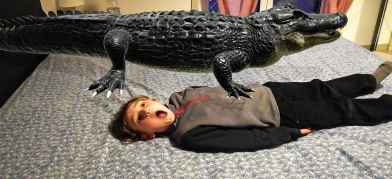 un bimbo che gioca con un coccodrillo in 3D con google
