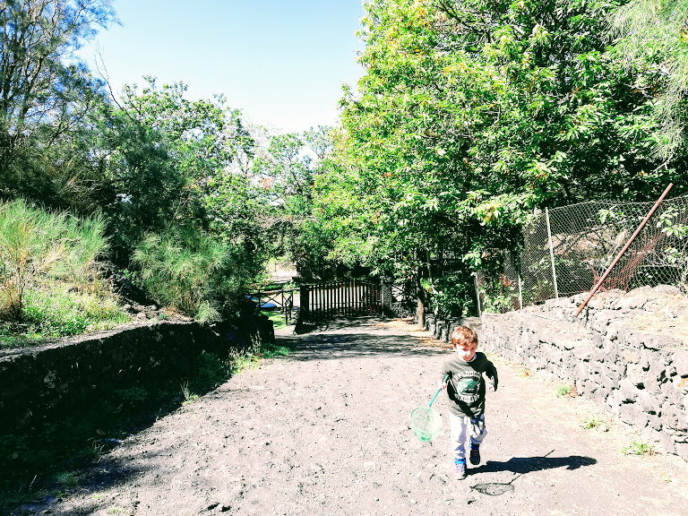 bambino che cammina in un sentiero sull'Etna